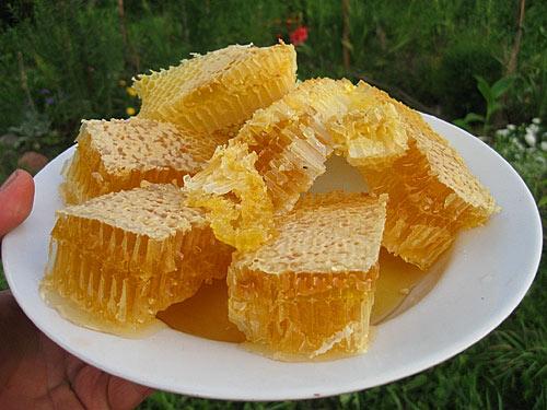 Где можно купить свежий мед и прополис в Киеве?
